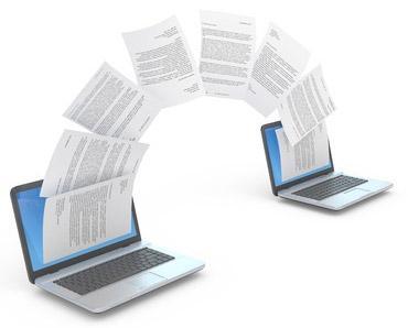 Website & Domain Name Transferring