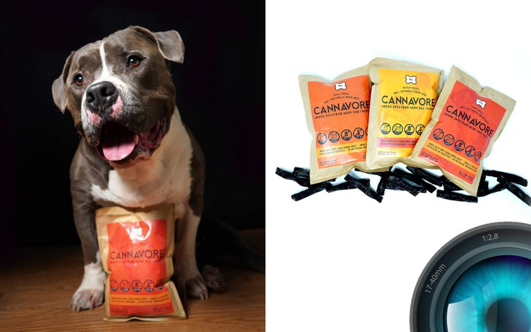 Product Photography for Dog Treat Company