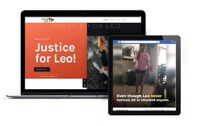 Donated Time: Website & Viral Video for Leo